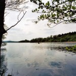 trout-fishing-lough-erne-northern-ireland-04